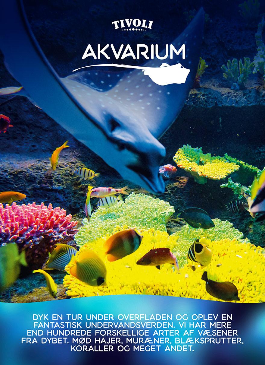 Identity_Tivoli_Akvarium_Poster